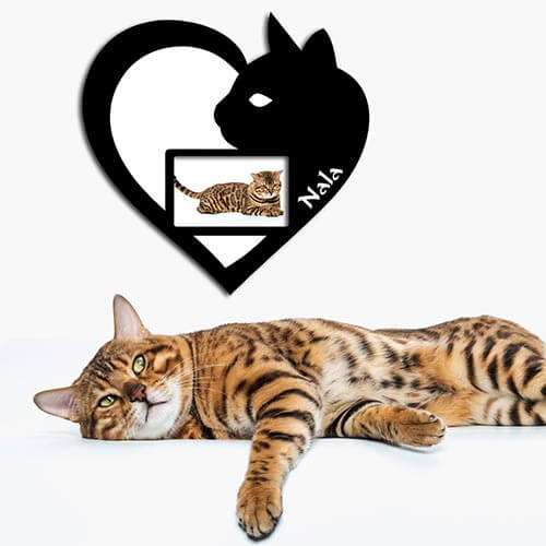 Geschenk für Katzenliebhaber